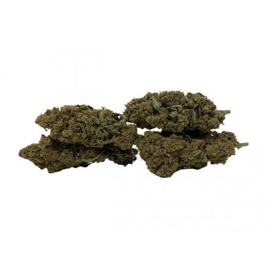 Bubblegum - 5 CBD Cannabidiol Cannabis flowers, 2 grams - CANVORY