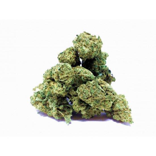 Gelato Punch - 4% CBD Cannabidiol Cannabis Buds, 2 gram