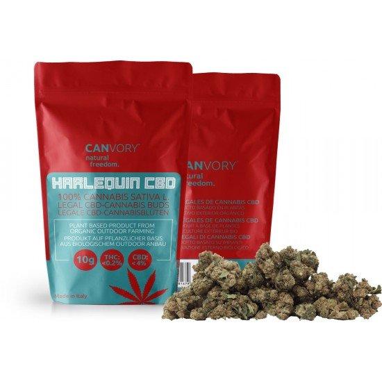 Harlequin CBD - 4 CBD Cannabidiol Cannabis Buds, 2 gram - CANVORY