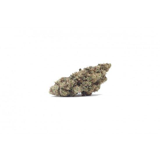 Harlequin Tsunami - 4 CBD freeze-dried Cannabidiol cannabis flowers Outdoor, 2 grams - CANVORY