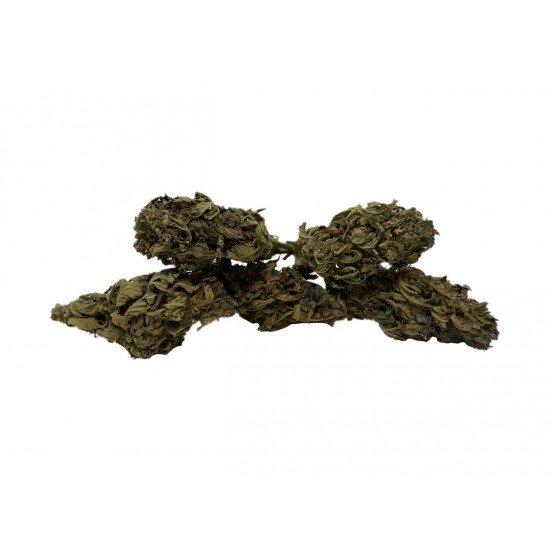 Strawberry Kush - 5 CBD κανναβιδιόλη Λουλούδια κάνναβης, 10 γραμμάρια - CANVORY