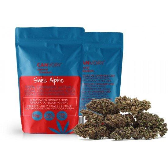 Swiss Alpine - 6 CBD Cannabidiol Cannabis Buds, 10 gram - CANVORY