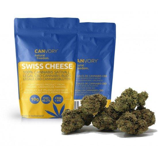 Swiss Cheese - 4 CBD Cannabidiol Cannabis Buds, 2 gram - CANVORY