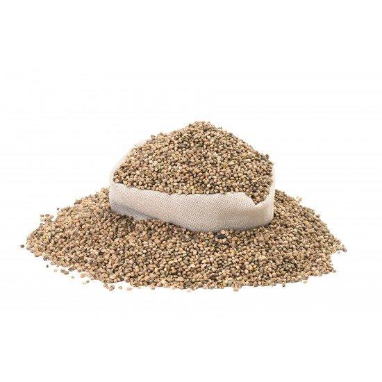 Organic hemp seeds unpeeled, roasted, salted, 150 grams - CANVORY
